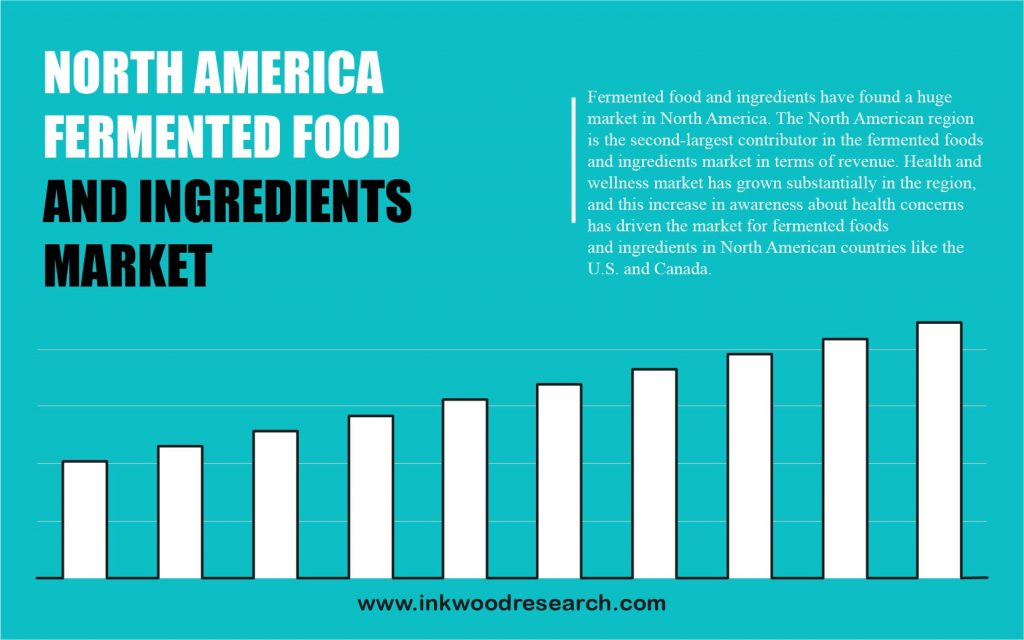 North America Fermented Food and Ingredients Market 2020-2028
